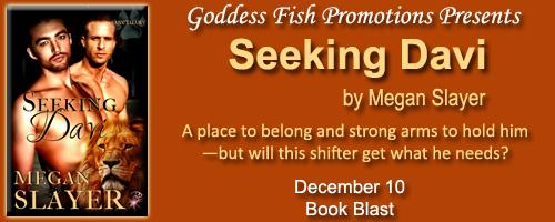 mbb_seekingdavi_banner2bcopy