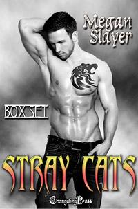 Cats Boxed Set