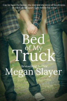 Bed of My Truck COVER ART 1.jpg
