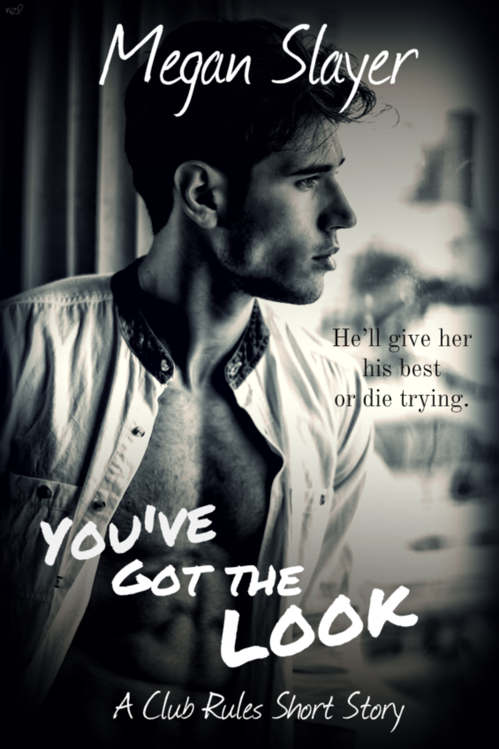 You've Got the Look COVER ART 2 LARGE