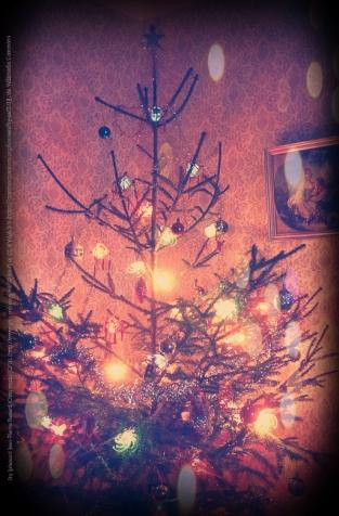 Christmas Tree Blog 2017