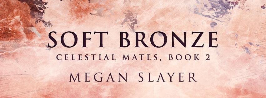 Soft-Bronze-evernightpublishing-banner1