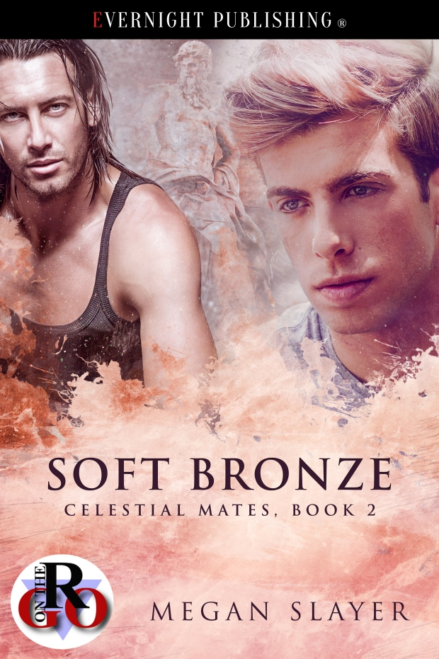 Soft-Bronze-evernightpublishing