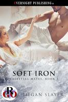 bookcover_soft2biron-ebookcomplete2b1